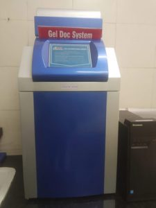 Gel Doc System